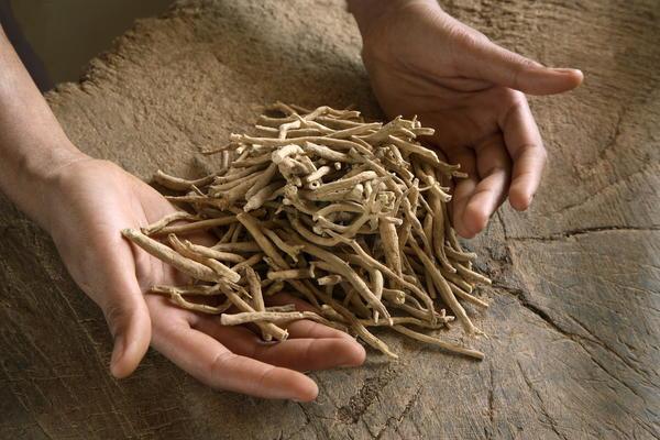 Najzdravije biljke na svetu: 3 najbolja leka za štitnu žlezdu (FOTO)