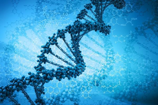 Naučite nešto o DNK od našeg napoznatijeg genetičara, doktora Miodraga Stojkovića (GIF)