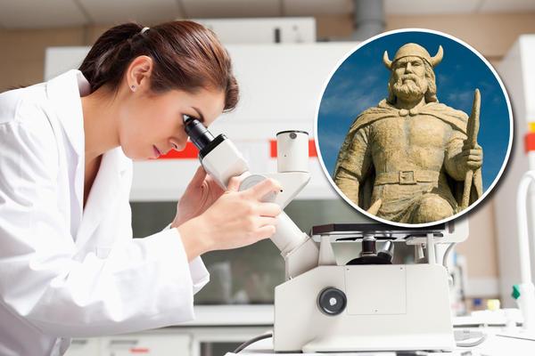 Kolumbo NIJE OTKRIO AMERIKU! DNK otkucao ko ga je preduhitrio 500 godina pre!
