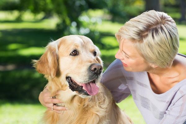 Šta se dešava kada pas liže vaše lice? Odgovor će vas zapanjiti!