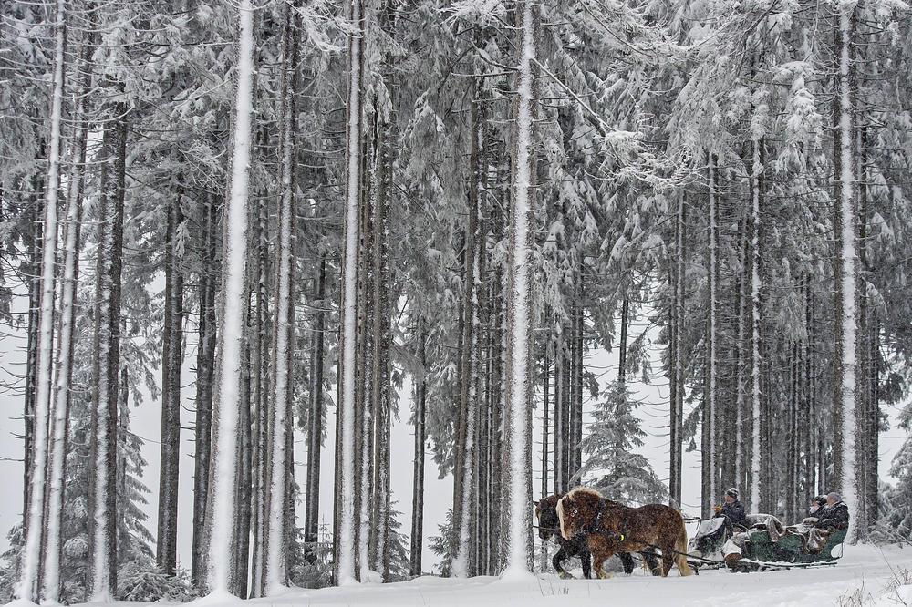 Zima kao inspiracija: Dela naivaca izložena u Muzeju u Jagodini