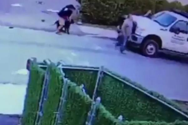 Horor: Pas brutalno napao dete, vukao ga po ulici! (FOTO) (VIDEO)