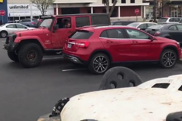 Voziš mečku, pa parkiraš bahato? ONDA SI ZASLUŽIO DOBRU LEKCIJU! (VIDEO)