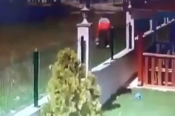 DEČAK PRESKOČIO OGRADU, NAPAO GA ČOPOR OGROMNIH DIVLJIH PASA: Horor snimak iz Turske! (UZNEMIRUJUĆI VIDEO)