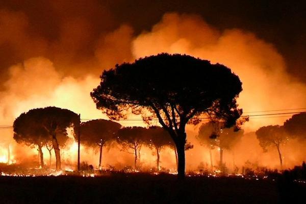 VATRA GUTA SVE: Evakuisano 1.800 ljudi, 550 vatrogasaca gasi požar u Španiji! (FOTO) (VIDEO)