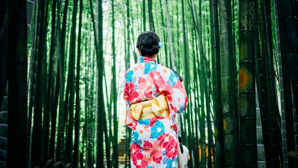 Japanske narodne poslovice i izreke   - Page 7 243966_bambootrees1853316-960-720_ff