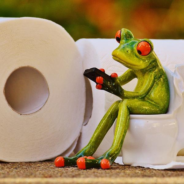 19 zanimljivosti o toalet papiru! Čik pogodi koliko ga ljudi ni ne koristi (FOTO) (GIF)