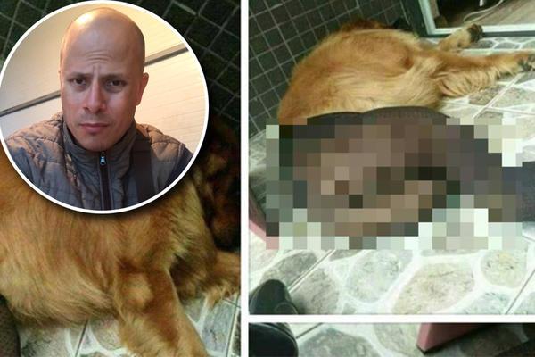 KO SU PERVERZNJACI KOJI OMAMLJUJU PSE, NAVLAČE IM ŽENSKE ČARAPE I IMAJU SEKS S NJIMA? Levijatan otkriva istinu o psećim bordelima u Srbiji! (VIDEO)