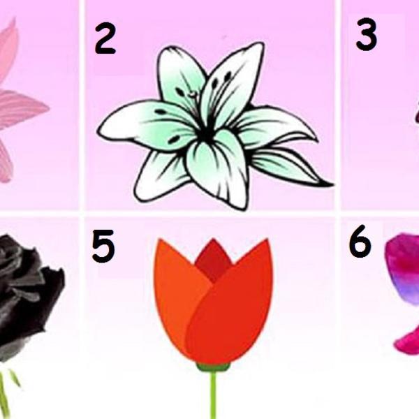 Koji cvet vam se najviše sviđa? On će vam otkriti zapanjujuću tajnu vašeg karaktera! (FOTO)