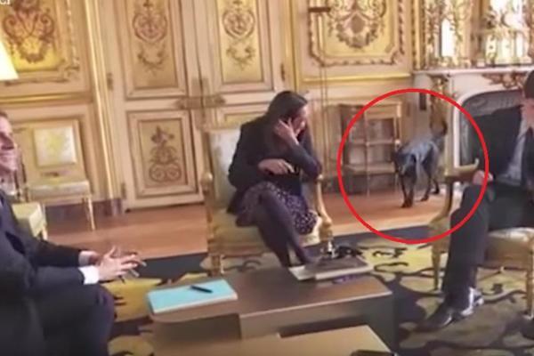 ŽESTOKA BLAMAŽA: Dok je predsednik držao važan sastanak, NJEGOV PAS GA OBRUKAO PRED CELIM SVETOM! (VIDEO)