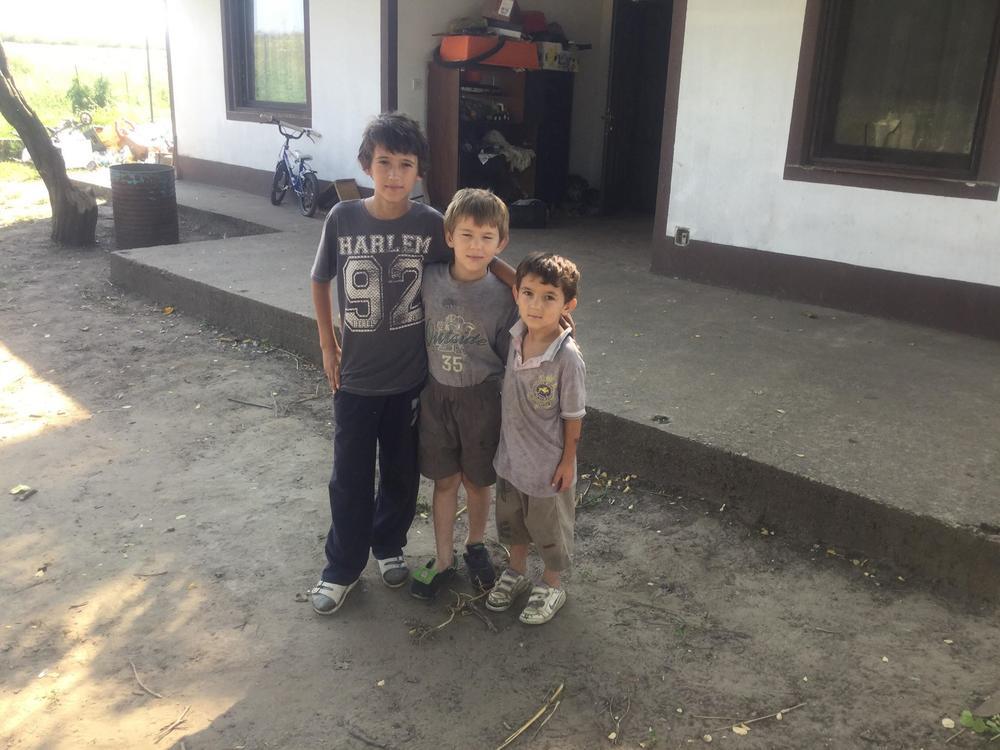 Tri brata, porodica Ilić