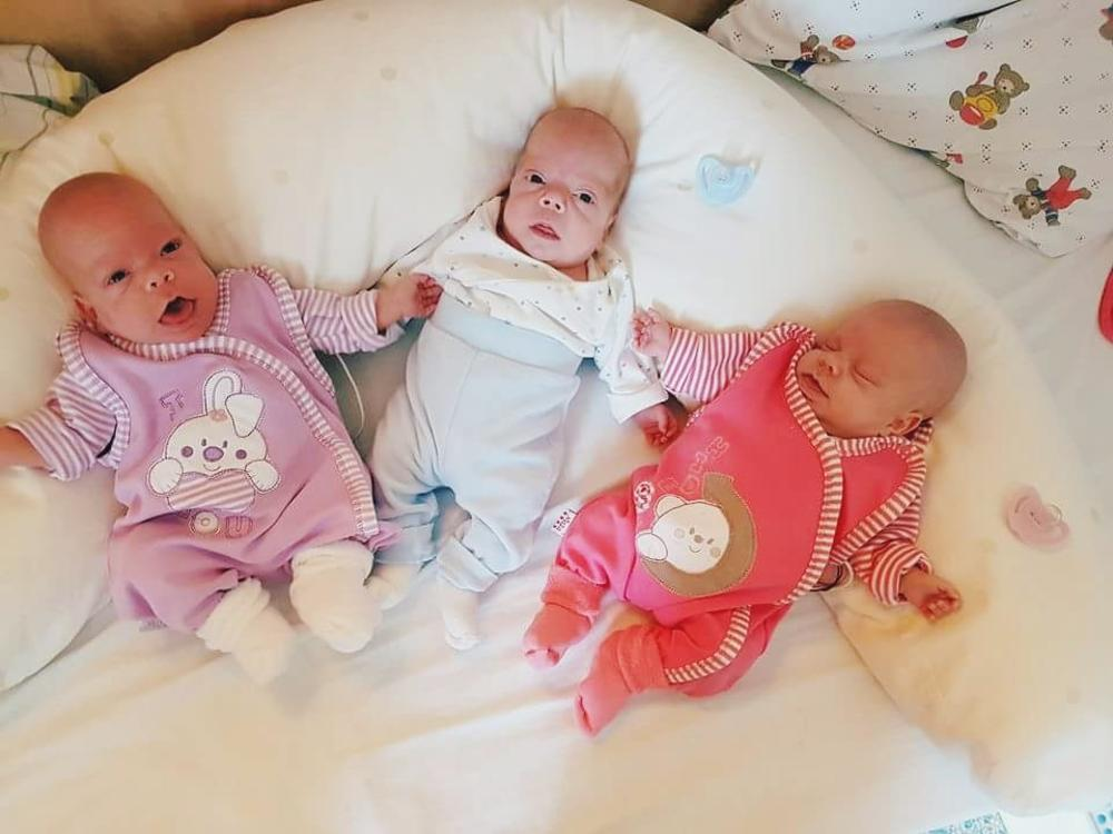 Bebice su žive i zdrave