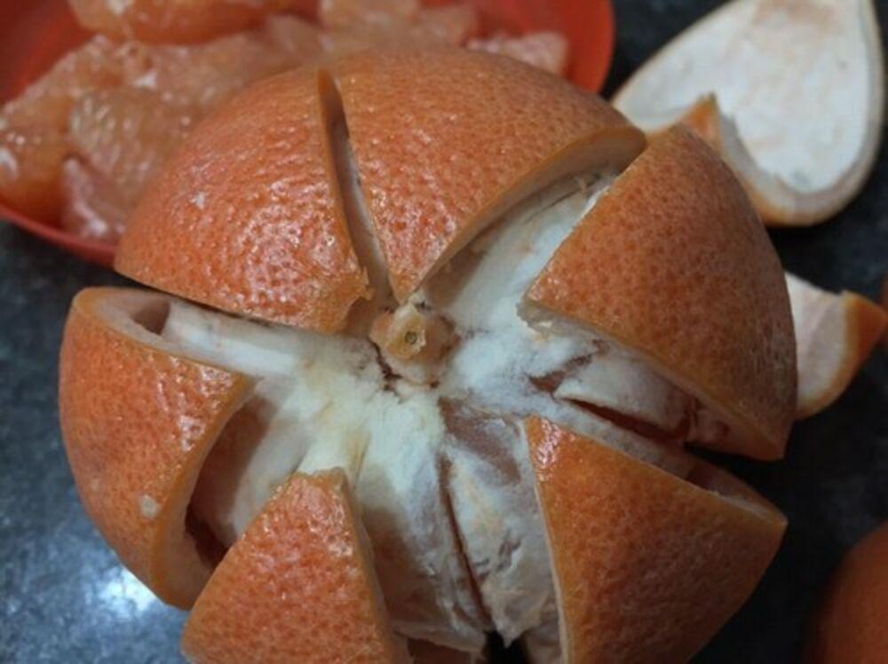 Grejpfrut